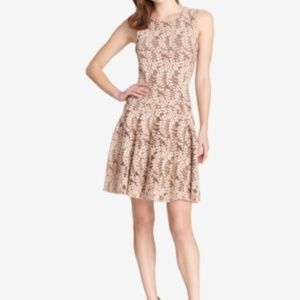 Tommy Hilfiger Woodstock Lace Fit & Flare Dress